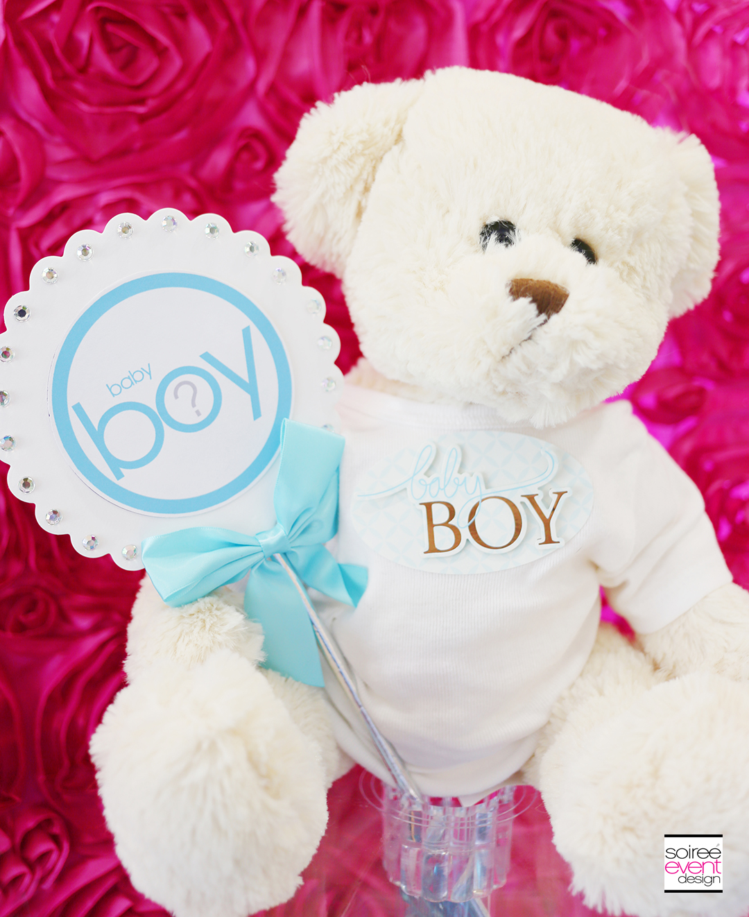 Gender Reveal Party Decorations - Boy