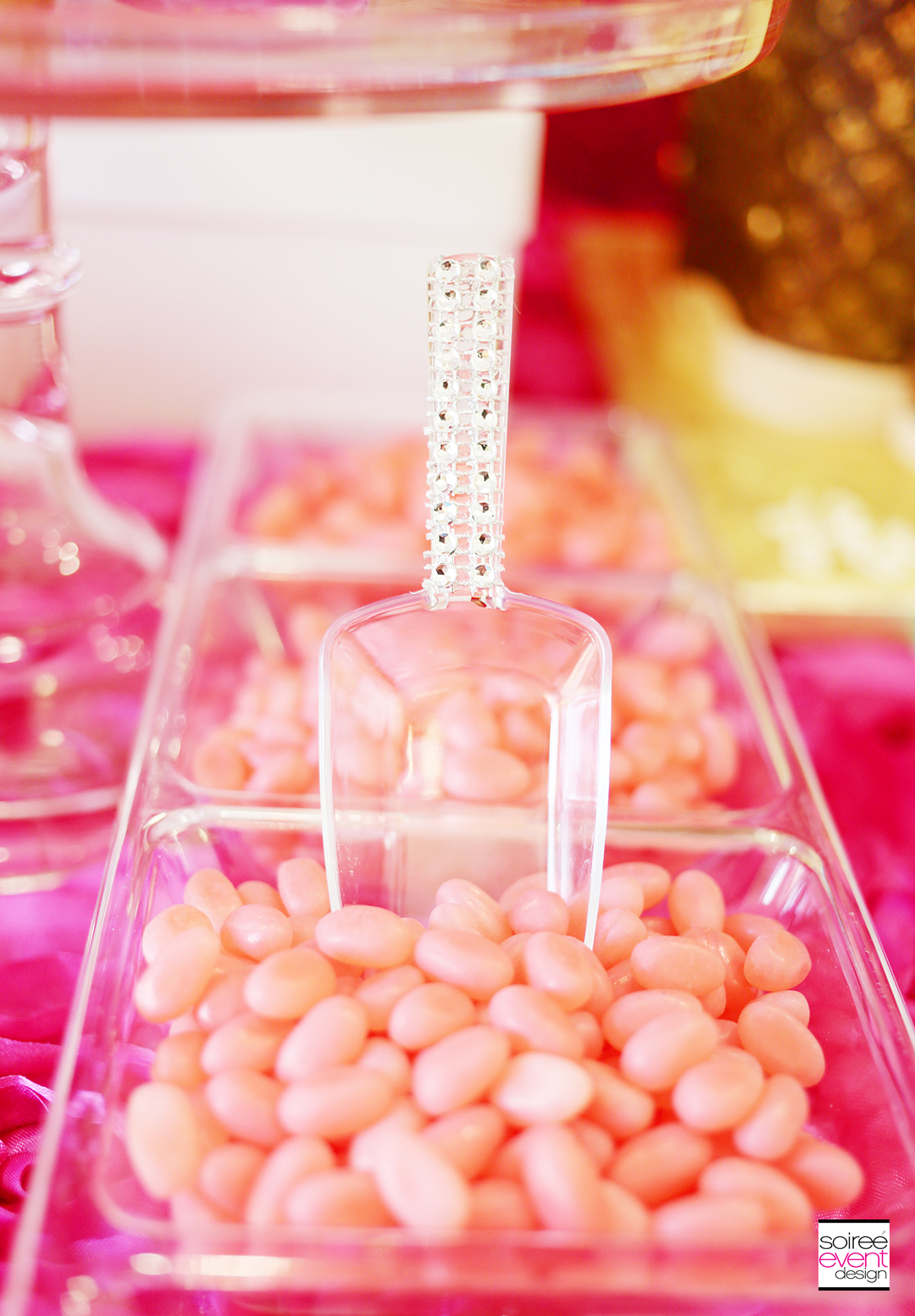 Gender Reveal Party - bling scoops