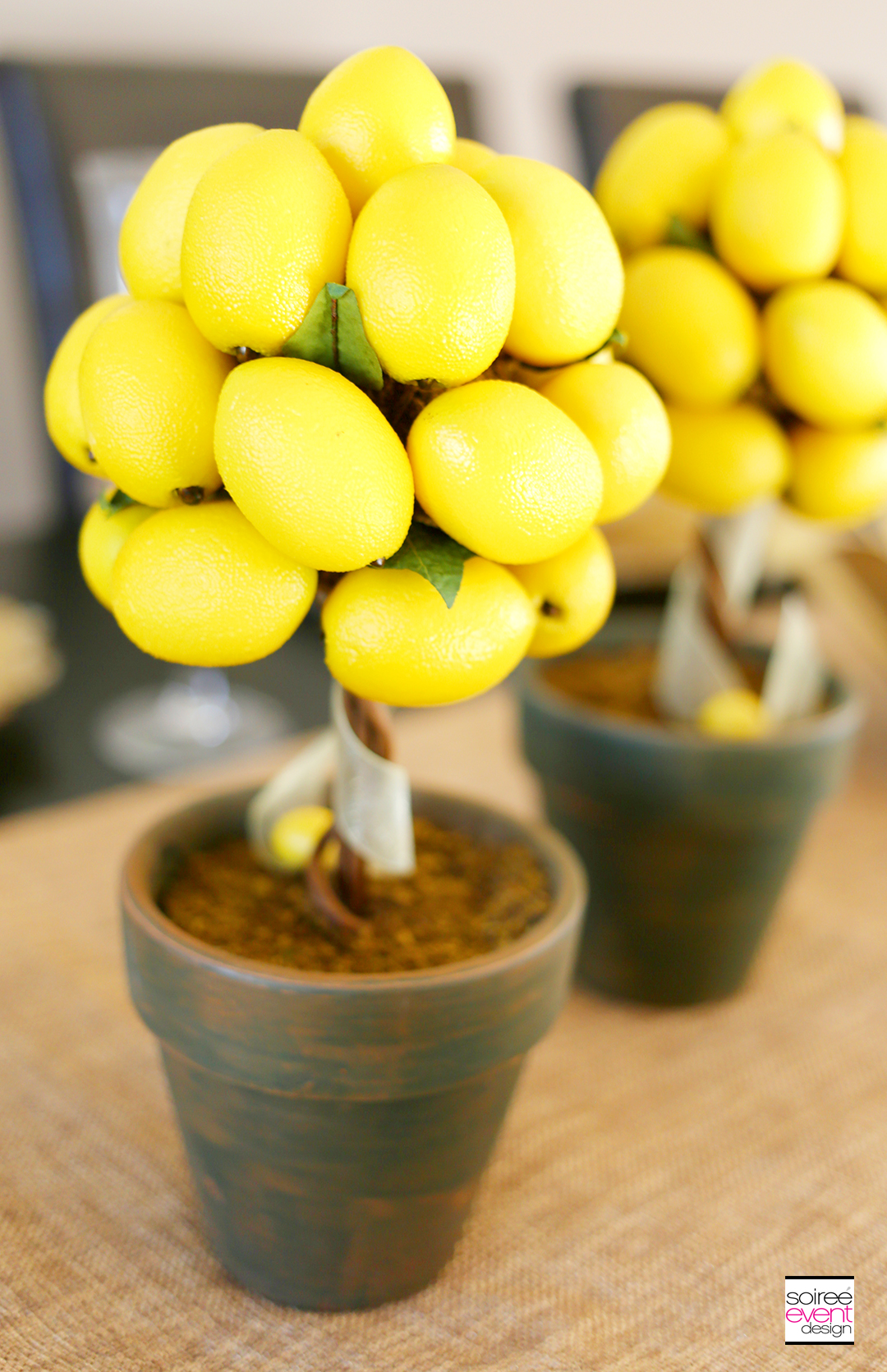 Summer Dinner Party - Lemon Topiary Trees